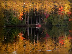 The red dock (yooperann) Tags: county autumn red orange lake fall leaves yellow reflections circle dock shadows bass michigan east upper peninsula marquette township forsyth gwinn