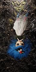 Into the rabbit hole - PDNTM sprookjes (pucchania) Tags: doll falling pullip aliceinwonderland rabbithole pullipvioletta