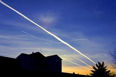 Ora blu e diagonali di scie chimiche con iridescenza (M a r i S à) Tags: strange sky chemtrails diagonal buildings trees backlight silhouettes bluehour iridescentcloud