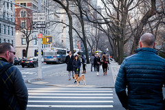 NYC | Instagram: @bayanalsadiq (Bayan AlSadiq) Tags: yellow nyc new york newyork city newyorkcity newyorker places travel travelphotography lights people street streetphotography streetlife نيويورك سفر امريكا fifthavenue avenue