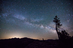 A Tree and Stars (world4photos) Tags: camping sky mountains tree silhouette night stars backpacking astrophotography milkyway tahoenationalforest