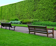 Which Bench Do You Prefer:  Curved or Straight? (Colorado Sands (away)) Tags: hbm benches edinburgh scotland uk gb royalbotanicgarden unitedkingdom greatbritain sandraleidholdt schottland scozia royalbotanicgardens hedge green scotlanda botanicalgardens botanischegärten