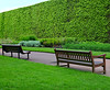 Which Bench Do You Prefer:  Curved or Straight? (Colorado Sands) Tags: hbm benches edinburgh scotland uk gb royalbotanicgarden unitedkingdom greatbritain sandraleidholdt schottland scozia royalbotanicgardens hedge green scotlanda botanicalgardens botanischegärten