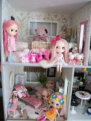 Dolly House.....LOVE PINK AND CARRY ON!