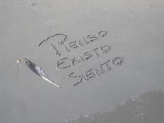 7 (confederacionfeafes) Tags: vacaciones2012
