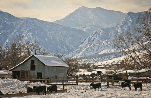 Photo - Barn and corral - photo by Jack Sasson