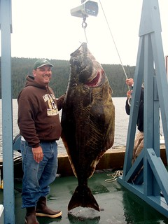 Alaska Salmon Fishing Lodge - Ketchikan 31