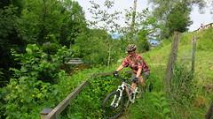 Heuberg (twinni) Tags: salzburg bike austria sterreich al w canyon mtb nerve 90 biketour heuberg flachgau mw1504 28062014