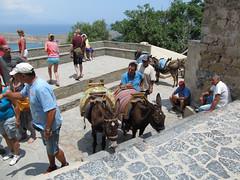 Donkey wranglers (pefkosmad) Tags: vacation holiday hellas donkey greece acropolis greekislands griechenland rhodes lindos dodecanese pefkosjune2014