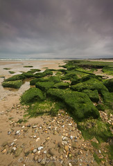 strand - tardinghen -frankrijk / beach - tardinghen - france (nature photography by 3620ronny.be) Tags: france beach nature water stone strand canon landscape sand fotografie natuur zee frankrijk landschap zand naturephotography stenen natuurfotografie tardinghen sigma1020mm456hsm canon7d 3620ronny