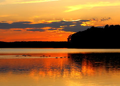 Evening delights (Sam0hsong) Tags: sunset northcarolina lakecrabtree pwpartlycloudy