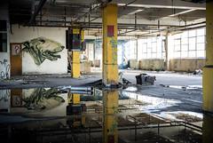 dog mess (james_drury) Tags: street urban dog art graffiti artwork paint south sheffield yorkshire graff aerosol exploration urbex explored rocket01