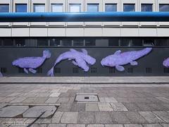 Berlin - Stralauer Strae (Claudia L aus B) Tags: berlin fisch mitte wandbild rhre 2014 weitwinkel claudialeverentz