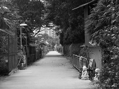 Quiet backlane in Singapore (dinokfwong) Tags: bw singapore streetphotography olympus amateur backlane unedited mirrorless unedit dinowong dinokfwong