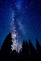 Sleepy Forest - Explored #28 (Matt Payne Photography) Tags: trees summer night oregon stars nightscape southsister milkyway