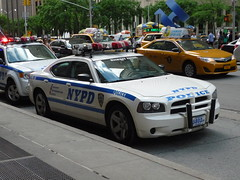 NYPD Dodge Charger (JLaw45) Tags: road door new york city blue urban music usa white ford apple public america sedan radio island four lights hall moving big highway automobile escape cops metro manhattan united north police nypd utility victoria corporation midtown company vehicle dodge government service crown law parked motor states enforcement chrysler emergency avenue suv northeast department siren americas patrol charger 6th daimler crossover