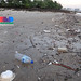 Marine trash in front of freshwater outlet