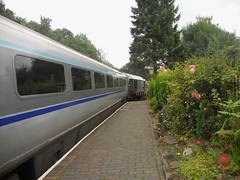 06I09I2014_The_Silver_King_C2 (peter_skuce) Tags: train railway alstom britishrail generalmotors severnvalleyrailway mark3 highley class67 wrexhamandshropshire chilternmainline
