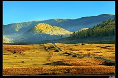 nEO_IMG_IMG_1545 (c0466art) Tags: trip travel autumn trees light horse mountain green beautiful field grass yellow canon season landscape photo amazing scenery colorful afternoon village view image north wide chinese area 5d  2010  c0466art