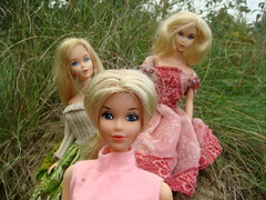 Quick Curl Miss America 1973 (Medithanera) Tags: wood pink two cute beauty face america landscape fun twins mod doll european time lace side barbie lot 1984 blonde era curl mold miss quick 1973 steffie reroot headmold