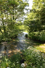 The River Meon at Mislingford (martin_swatton) Tags: uk trees england green canon river eos countryside hampshire usm meonvalley f28l ef2470mm 5d2