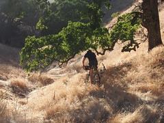 Duck Tom (MannyAcosta) Tags: bike tom james flickr sam mark shell sean ridge works warren soma overnight rivendell tilden rive s240