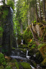 Cascade (Undertable) Tags: nature water wasserfall natur falls wald stblasien assamstadt menzenschwand oliverbauer