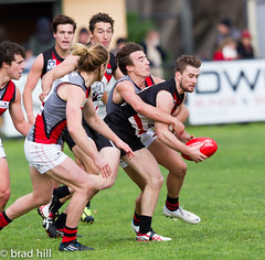 """IMG_4722 (Go to """"Albums"""" for all pics) Tags: club football dolphins frankston bombers essendon vfl"""