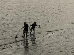 Serious mud fishing (plekton11) Tags: bw white black macro kids fishing mud olympus 60mm zuiko elbe omd em5