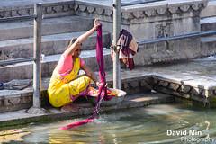 Udaipur, India - Daily Life Along The Lake (GlobeTrotter 2000) Tags: life city urban woman india lake river palace daily clothes wash laundry sacred washing udaipur rajahstan sagar pichola mewar