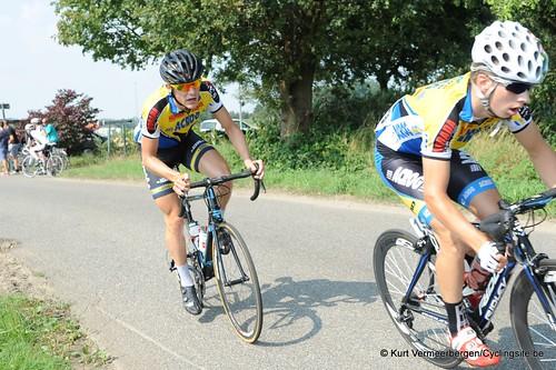 Geel Oosterlo  (84)