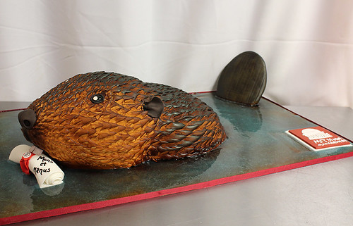 Beaver MIT Graduation Cake