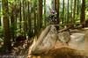DSC_9159 (burning-pixel) Tags: green biking fromme
