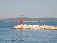 Kukljica (Miroslav Vajdi) Tags: sea summer vacation amazing fantastic sailing croatia best adriatic no1 unbelievable photooftheday freeimage zadarcounty freelicence m1r0slavv miroslavvajdic