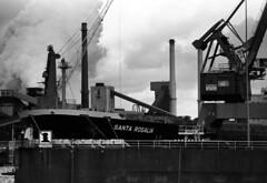 (Sean Anderson Classic Photography) Tags: santa steel tata mc contax 100 pentacon pyro f28 rx 135mm pmk rosalia ijmuiden velsen fomapan filmfilmforever
