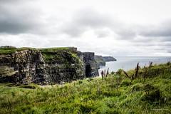 #ORappanaeuropa - Cliffs of Moher (IRE) 13/08 (O Rappa Oficial) Tags: galway europa agosto viagem cliffsofmoher irlanda 2014 orappa lobato orappanaeuropa
