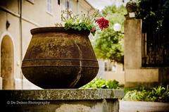 Nature (Bruno De Deken) Tags: france flower nature vakantie natuur frankrijk steen bloem bloempot otherkeywords