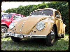 VW Beetle Split Windows (v8dub) Tags: auto old windows classic car vw bug volkswagen automobile beetle automotive voiture cox oldtimer split oldcar rare collector kfer coccinelle kever fusca aircooled wagen pkw klassik maggiolino worldcars