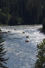 Rafting (•Nicolas•) Tags: unitedstates usa america holidays roadtrip 2014 snakeriver rafting tree forest nature river water nicolasthomas
