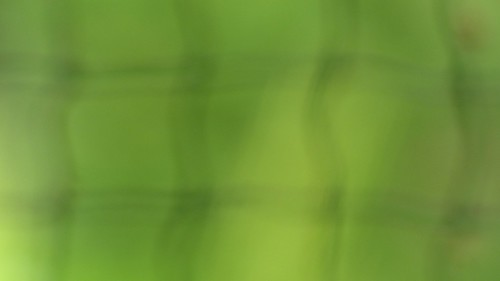 Background_Green_Net_02