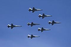 Gran Parada Militar 2014 Chile (alobos Life) Tags: chile tiger iii militar gran f5 avion area cuadrilla parada 2014 fuerza