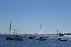 Boston Harbor (The Flying Inn) Tags: city water boston docks harbor boat fishing yacht ships transportation wharf rowes fortpointchannel roweswharf massachusettsbostonharbor