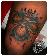 Cucarron D' la Morte * (Xtofu.youthX) Tags: tattoo insecto cucarron tattooinsecto