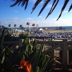 Summer Nights - Santa Monica Pier, California, USA (cyduke) Tags: california square pier losangeles santamonica squareformat iphoneography instagramapp