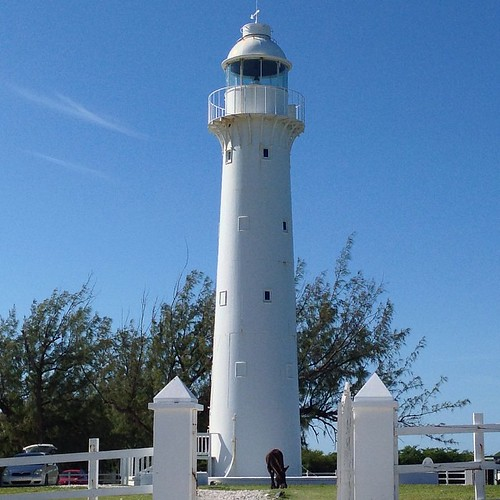 The lighthouse on the northern tip of Grand Turk with one of the 100's of feral donkeys that live on the island eating grass in the foreground.  #tci #turksandcaicos #grandturk #lighthouse