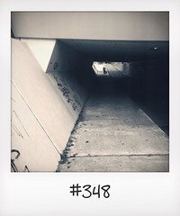 "#DailyPolaroid 11-9-14 #348 • <a style=""font-size:0.8em;"" href=""http://www.flickr.com/photos/47939785@N05/15379474491/"" target=""_blank"">View on Flickr</a>"