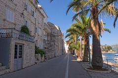 Aleja palmowa | Palm street :)