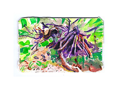 uprooted (Josh Torin) Tags: trees summer rural forest watercolor miniatures landscapes woods branches rustic roots josh foliage gouache metrocard torin miniaturepainting mckeon pocketart metrocardminiatures metrocardpaintings