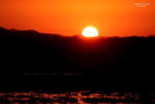 Gira al Parque Nacional Palo Verde, CIENTEC