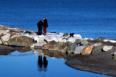 Pausa di riflessione (meghimeg) Tags: 2017 sestrilevante coppia couple scogli rocks cane dog acqua water mare sea riflesso reflection